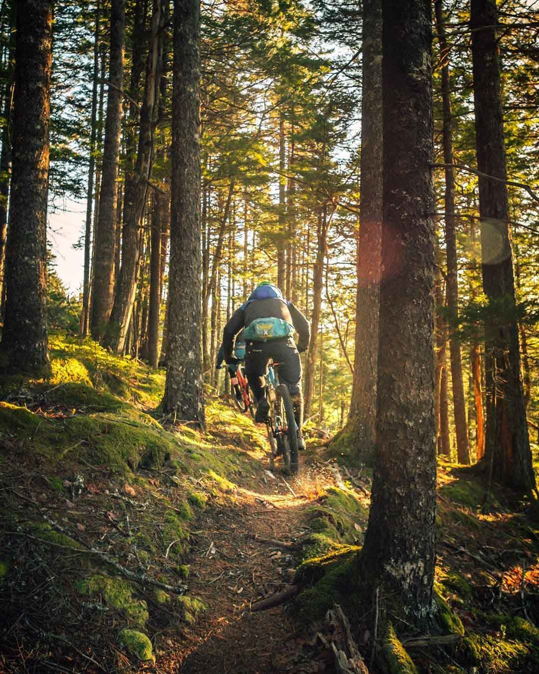A person is riding a MTB in forest around Algarve