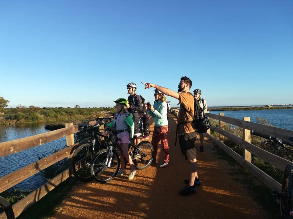 People are enjoying a bike tour in Faro and stopping around RIa Formosa lagoon